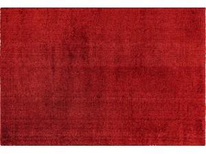 Payton Red